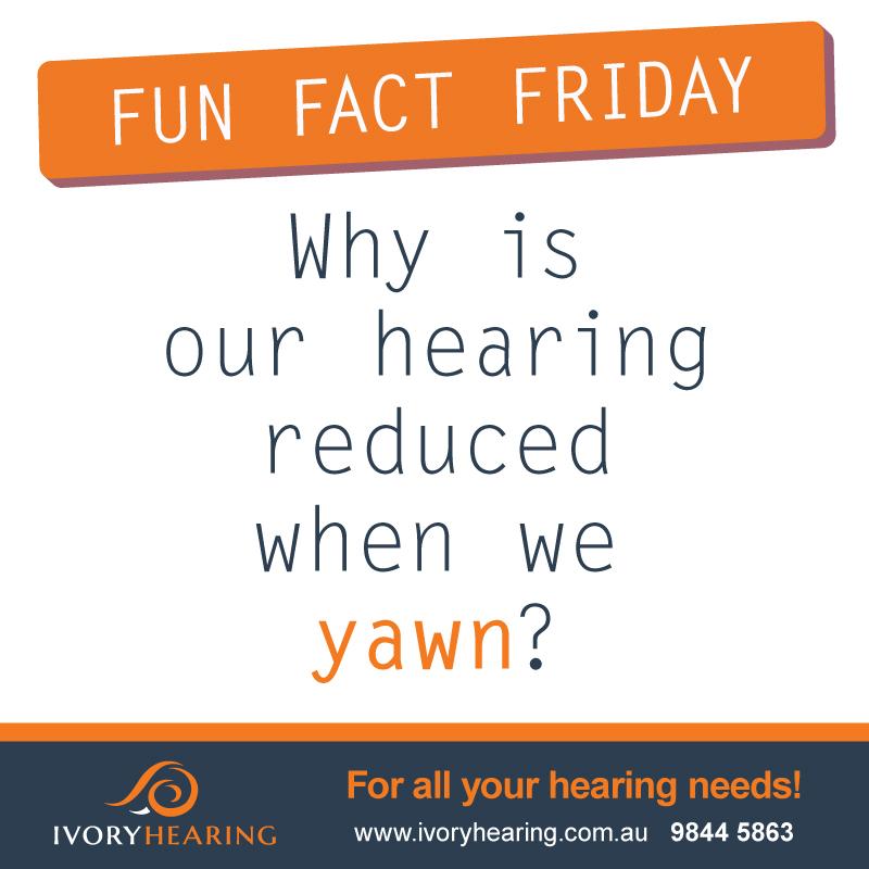 FunFactFriday-Yawn